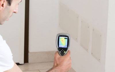 Thermal Imaging & Building Inspections